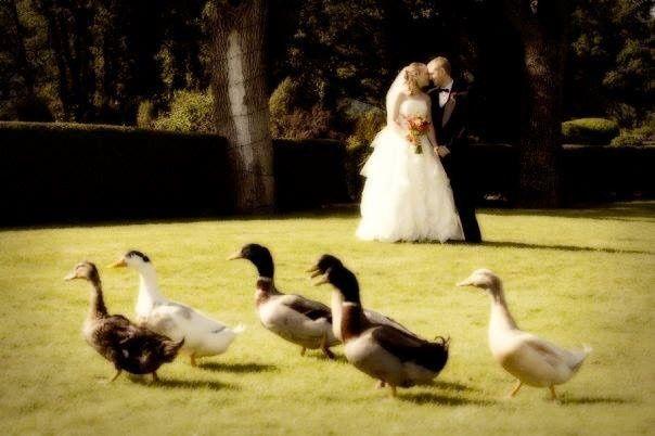 Tmx 1469254282453 Img0429 Hood River, OR wedding venue
