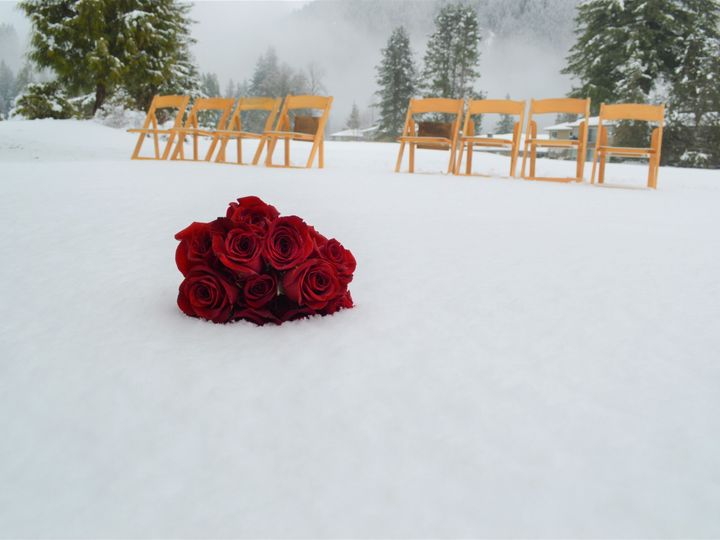 Tmx Rose And Snow 51 337529 158049545329346 Welches, OR wedding venue