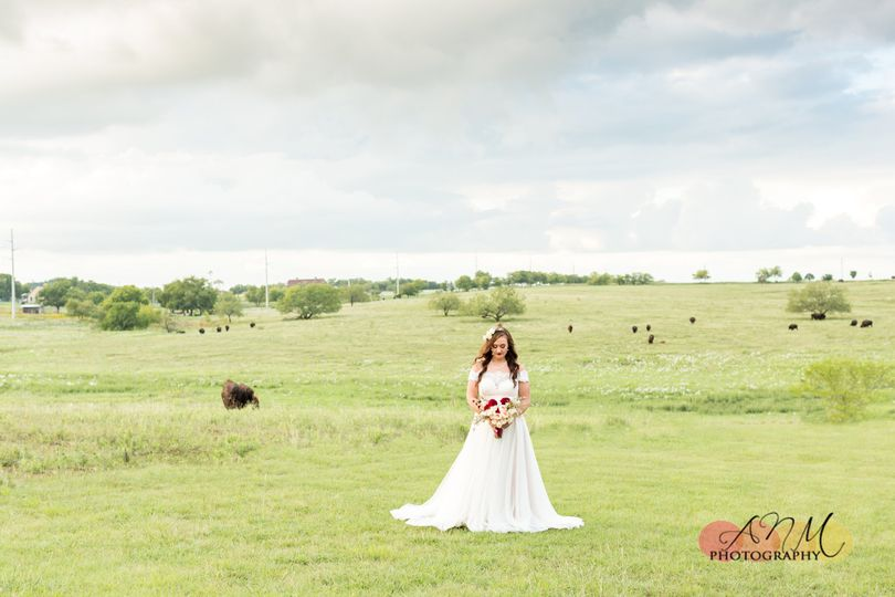Bride and Buffalo
