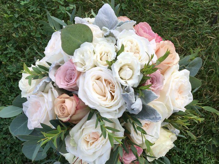 Tmx Photo Aug 11 3 07 38 Pm 51 25629 1559064707 Peabody, MA wedding florist