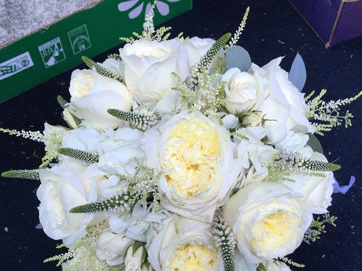 Tmx Photo Aug 19 3 49 52 Pm 51 25629 1559064707 Peabody, MA wedding florist