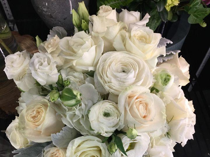 Tmx Photo Feb 21 8 22 32 Am 51 25629 1559064713 Peabody, MA wedding florist