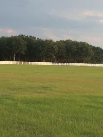 Our beautiful 35 acre grass field to have your open wedding or tent wedding/reception in.  Starting...