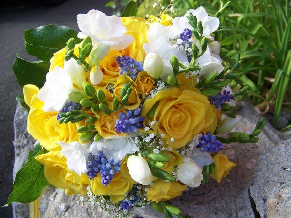 Tmx 1300289173896 Freesianigellaandyellowroses Redding, CT wedding florist