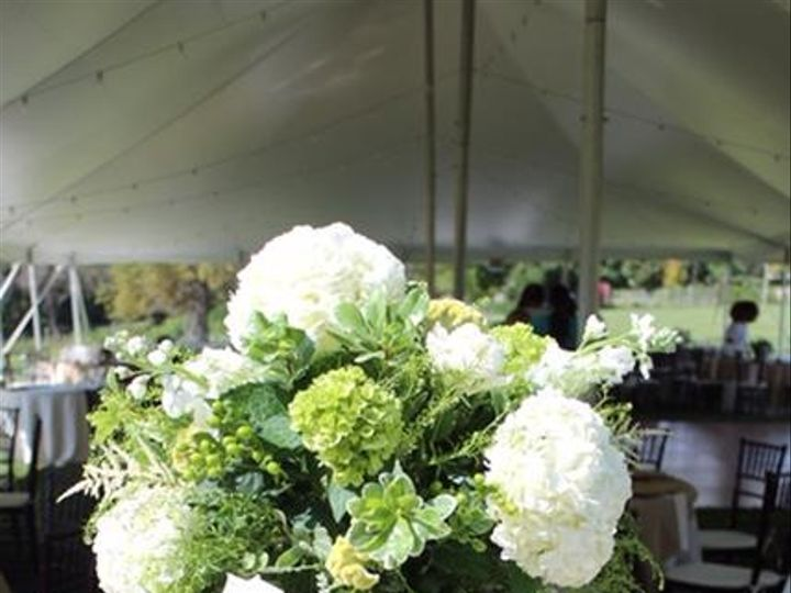 Tmx Olsen 2 51 115729 161012949341339 Wilton, CT wedding florist