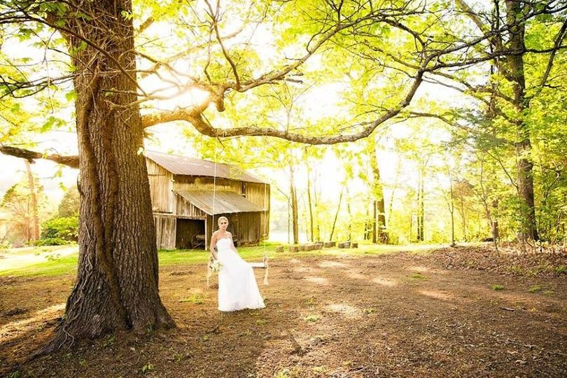 Bride on the tree swing