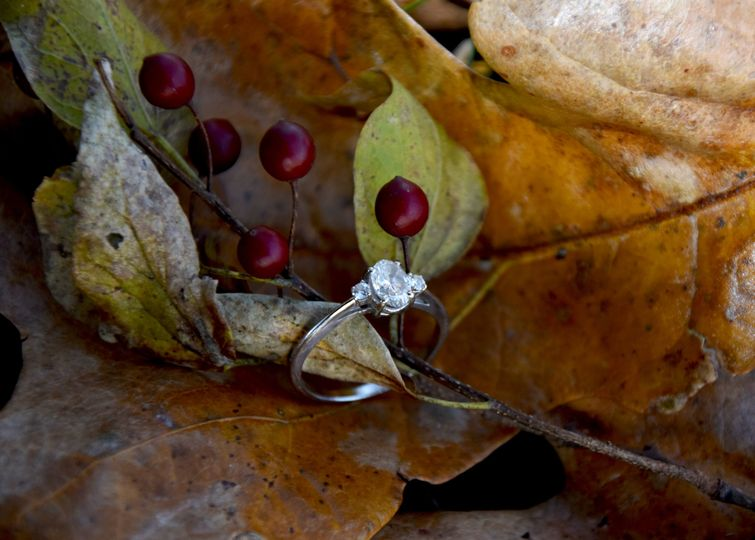 Leaf and rings