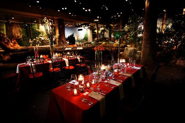 Tmx 1330700714222 0005 Raleigh, NC wedding venue