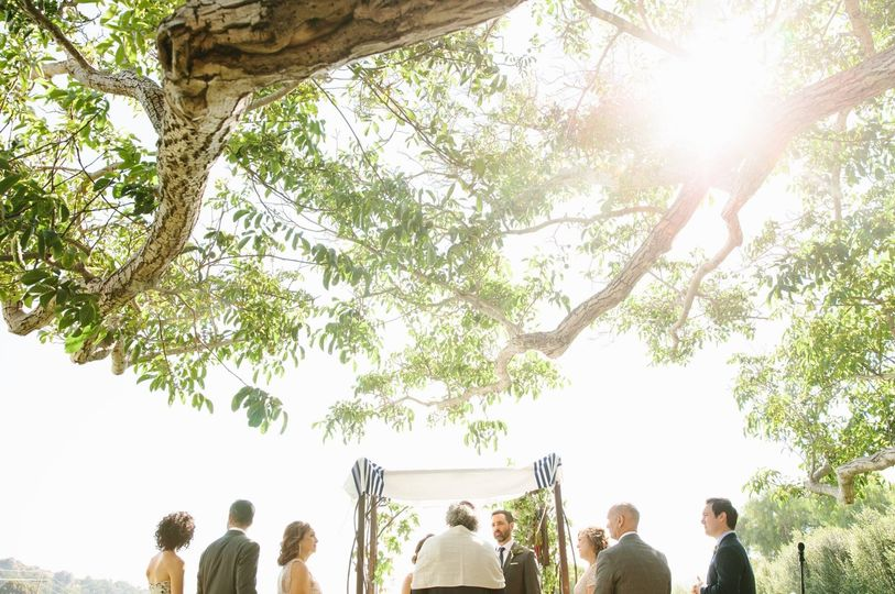 Sunlight during the wedding