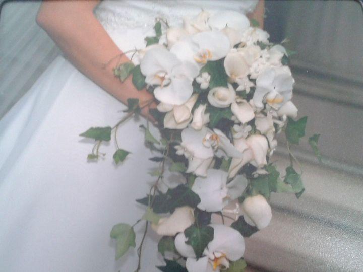 Tmx 1366900593799 2013 04 13 14.43.07 Fishkill wedding planner