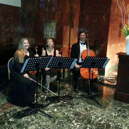 A Beautiful Violin & Trillium Ensembles