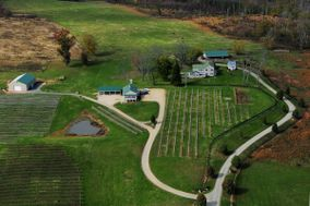 Weston Farm Vineyard & Winery