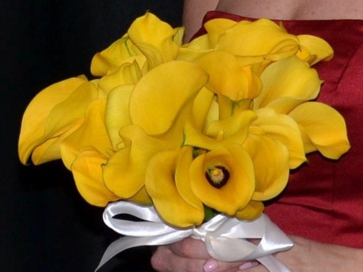 Tmx 1346973086341 DSC0116A Dallas wedding florist