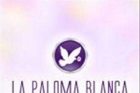 La Paloma Blanca Floral Designs