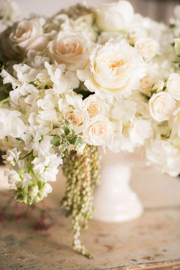 Romantic ivory tones