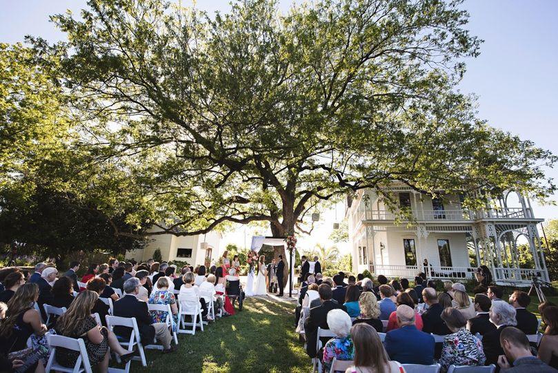 Ceremony under our pecan tree