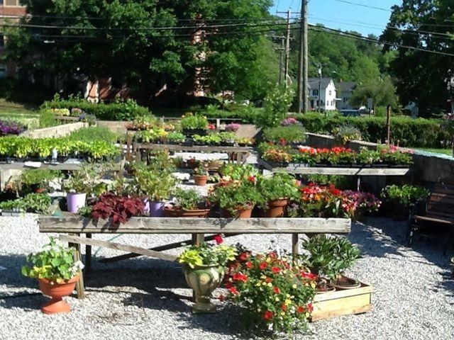 Tmx 1374940949423 Garden Center Thomaston wedding florist