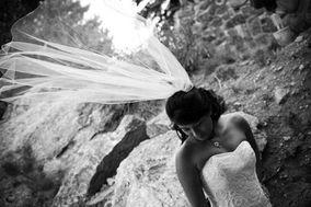 Tamara Murphy Photography