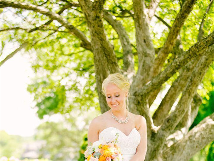 Tmx 1466612607903 Ratzlaffnovakjeanninemariephotographyamandajason01 Saint Paul, MN wedding dress