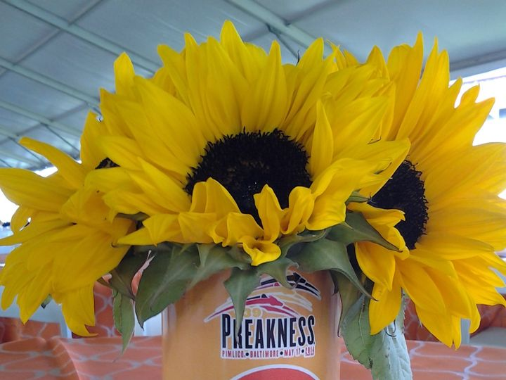 Tmx 1415919348431 Preakness139 11 Glen Arm, MD wedding florist
