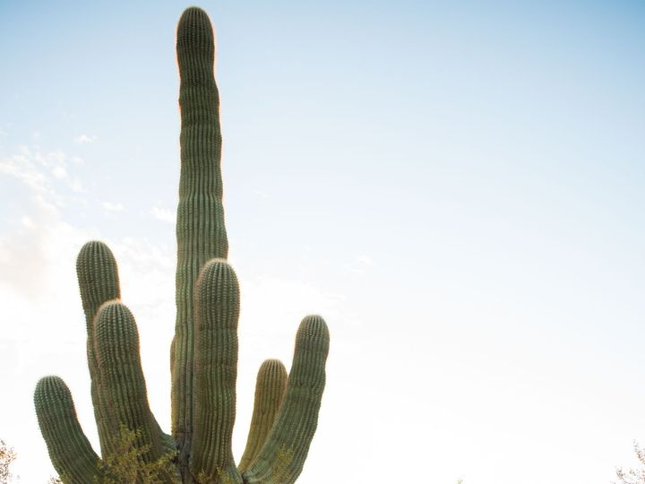 Tmx Rmw Photo Video 741 51 793539 Mesa, Arizona wedding photography
