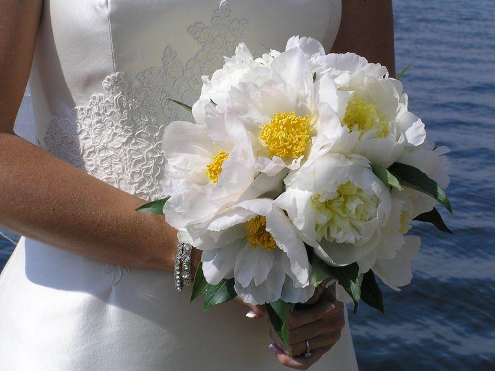 Tmx 1466964176801 Aa 05 64 Madison wedding florist
