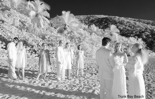 Bring your family and friends to your Island Wedding