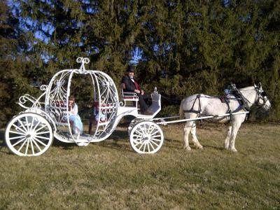 Tmx 1363373588884 Marooncarriagewithwhitehorse Indianapolis wedding transportation
