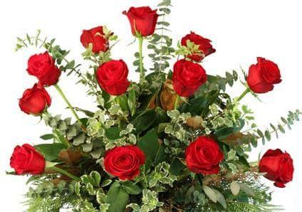 flowers 01 51 1034639