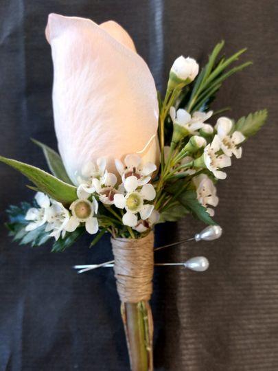 The lovely white rose
