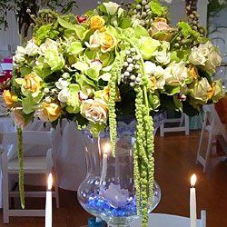 Tmx 1326858203292 Rosebudphotos144 Pitman, NJ wedding florist