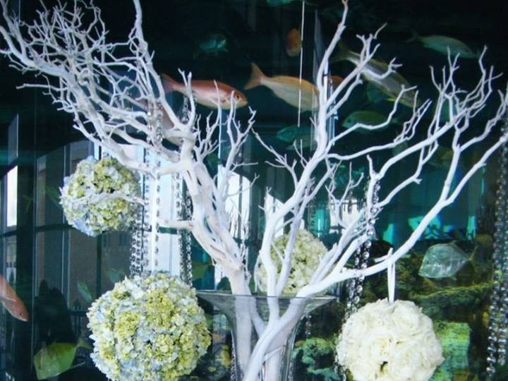 Tmx 1415919924779 W13 Pitman, NJ wedding florist