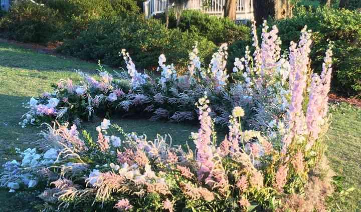 Scarlett Begonia Florals