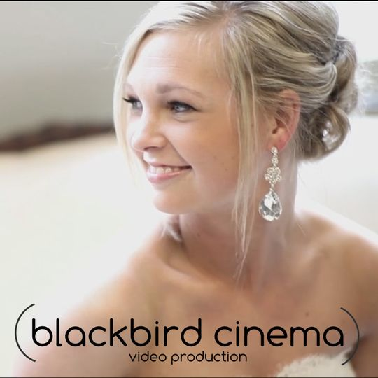 Blackbird Cinema