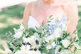NoVa Blooms by Megan