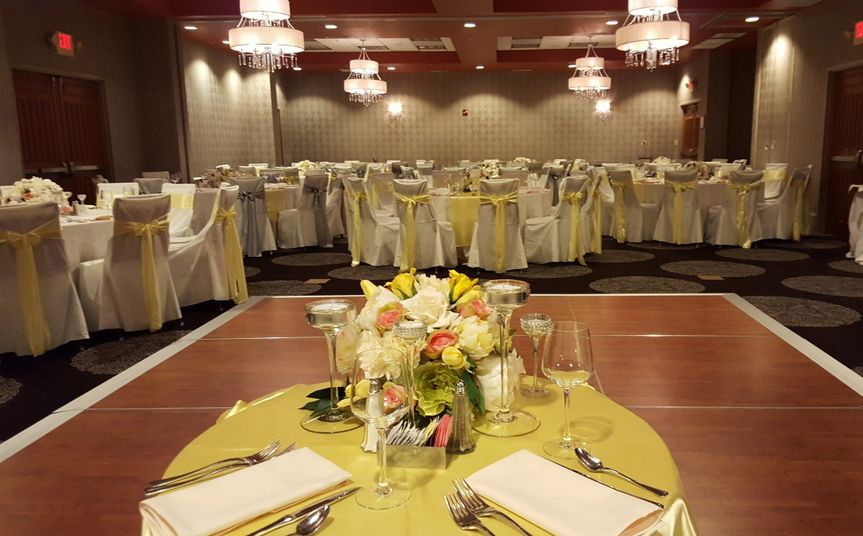 Hampton inn suites brier creek venue raleigh nc weddingwire 800x800 1472760031068 lookout wedding junglespirit