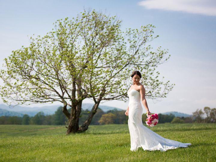 Tmx 1536026975 A858ba39a0d3811f 1536026971 A4484f0af4cef659 1536026956165 29 HillPeriniWedding Charlottesville, VA wedding planner