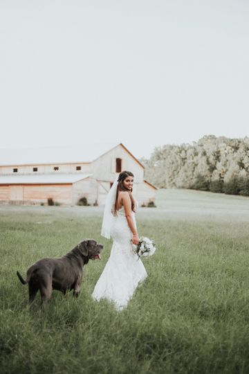 Bride and dog | M. Michael Photography