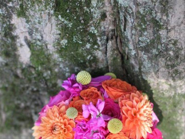Tmx 1323743064240 IMG0233 Andover, New Jersey wedding florist