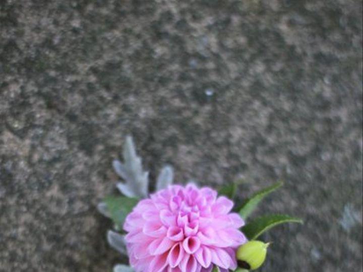 Tmx 1323743099090 IMG2266 Andover, New Jersey wedding florist