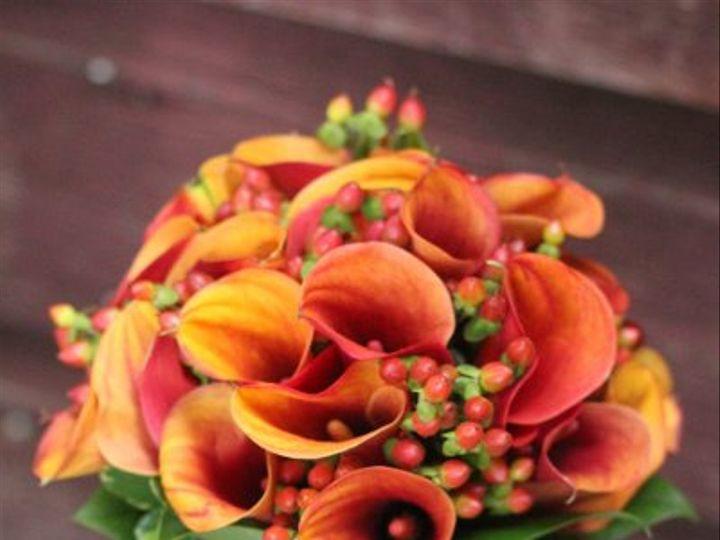Tmx 1323743113333 IMG0812 Andover, New Jersey wedding florist