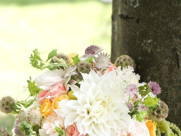 Tmx 1350476656279 IMG6214 Andover, New Jersey wedding florist