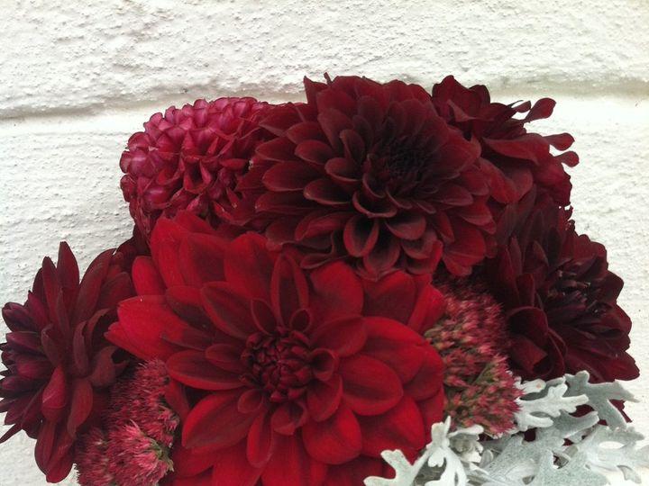 Tmx 1350476810725 IMG0497 Andover, New Jersey wedding florist