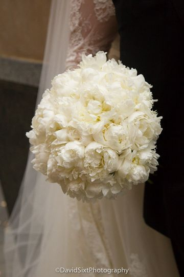 Big ball of white flowers