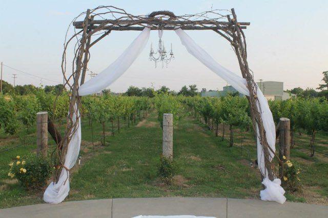 Ceremony overlooking the vineyard