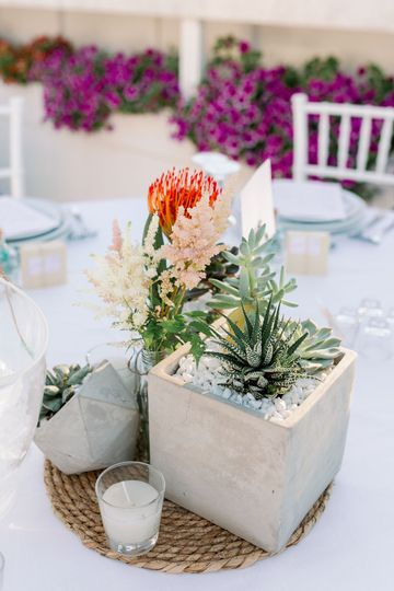 Protea decor