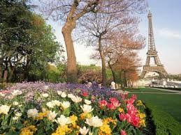 Tmx 1429585192284 Paris Wimberley, TX wedding travel