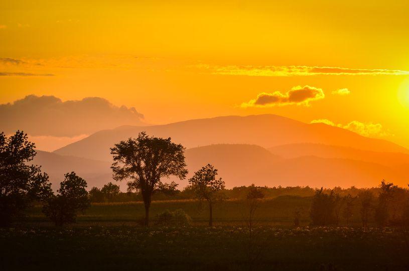 Sunset - Wren Olivia Photography