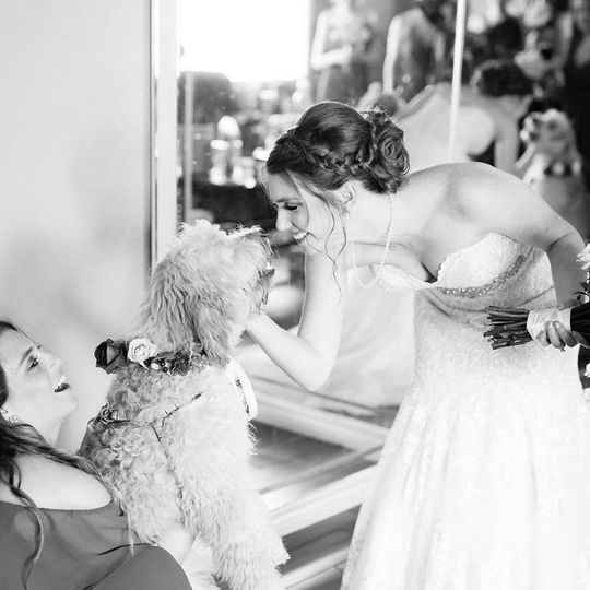 Bride petting her dog