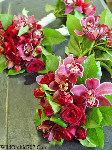 800x800 1386780161544 red rose orchid bouquet sonoma wedding florist seb